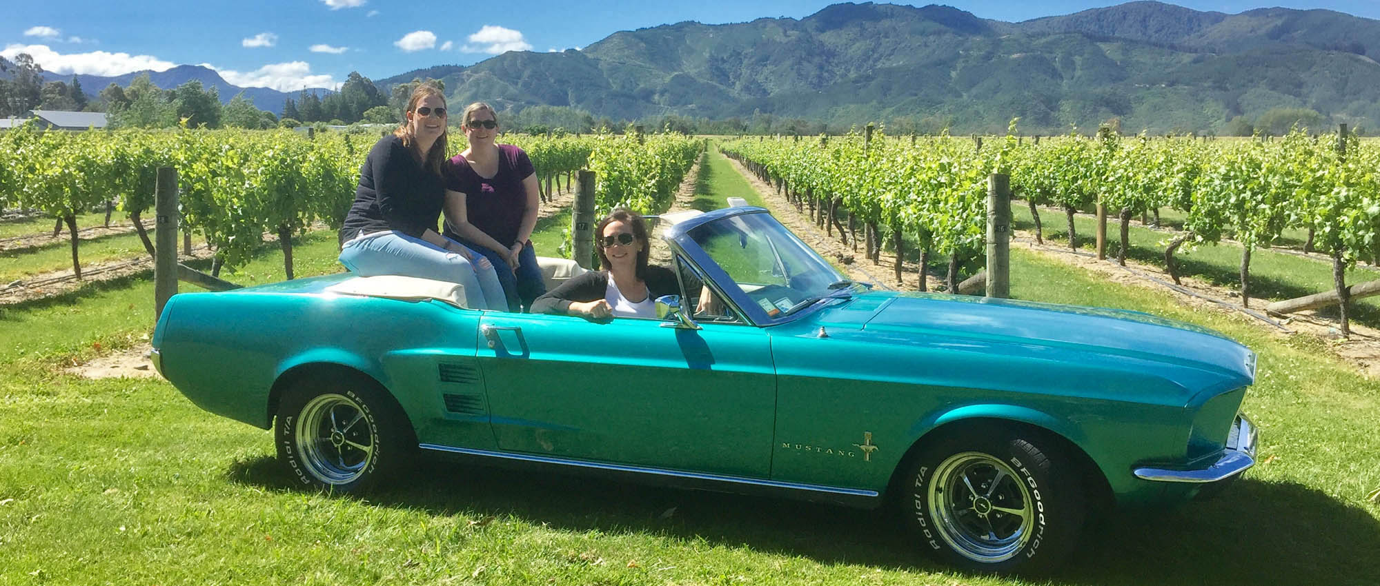 Classic Car Wine Tour Marlborough
