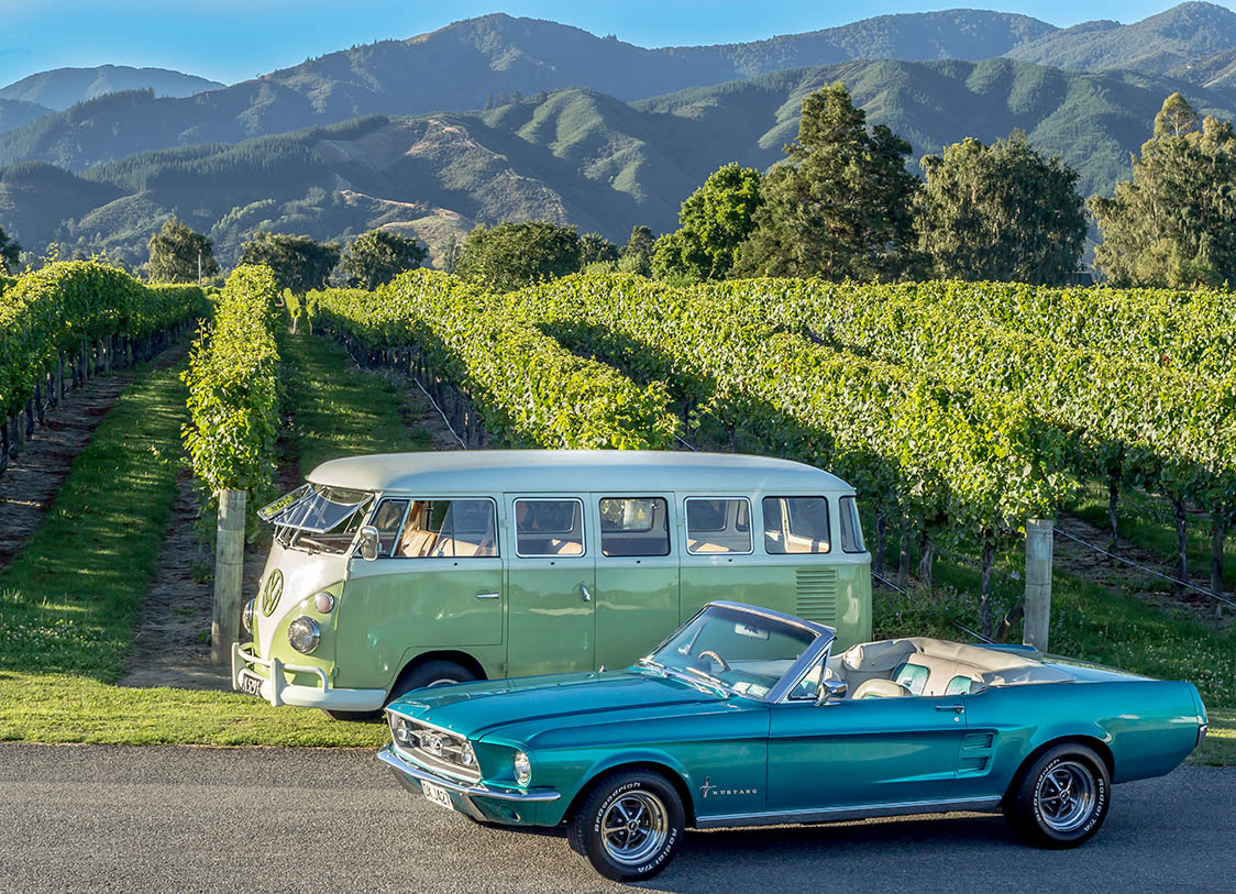 private marlborough sightseeing wine tours